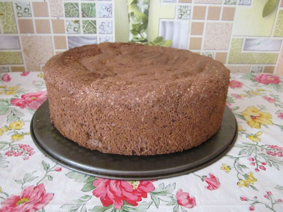 Торт бисквитный шоколадный рецепт в домашних условиях