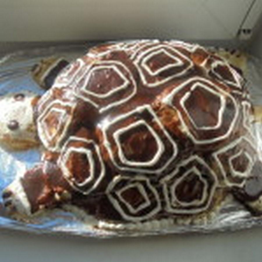 Торт «Черепаха» со сметаной — проверенный рецепт с фото пошагово!