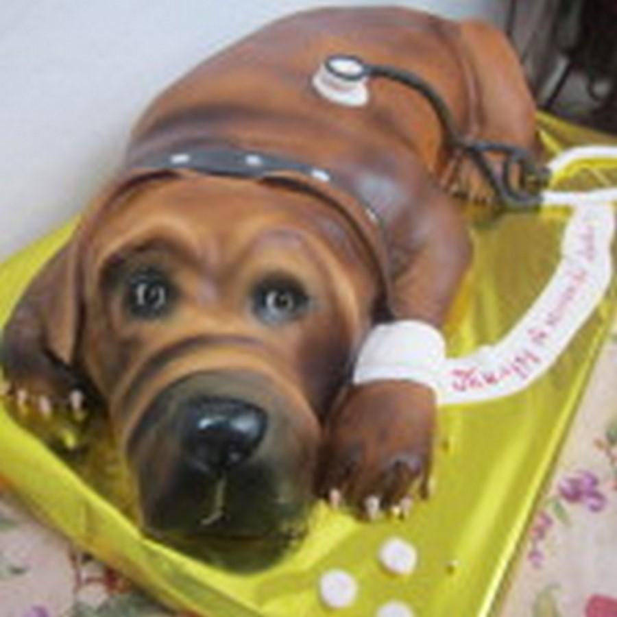 Шоколадная собака. И как ее есть?:)