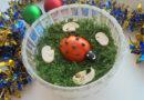 Салат Грибная поляна с шампиньонами, мясом и сыром